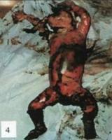 afrikaner genocide babies killed